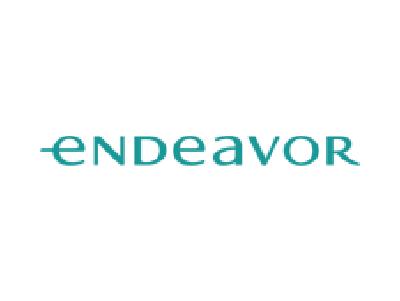 Logo endeavor uruguay