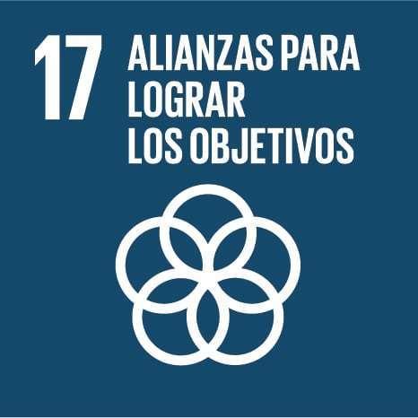 17: alianzas para lograr los objetivos