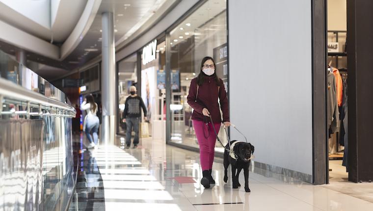 Señora camina por pasillos de Nuevocentro con perro guía